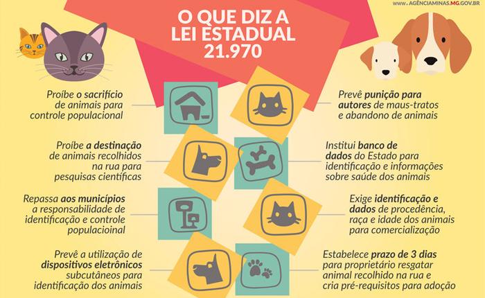 Lei que garante proteção e bem estar a cães e gatos é sancionada em Minas