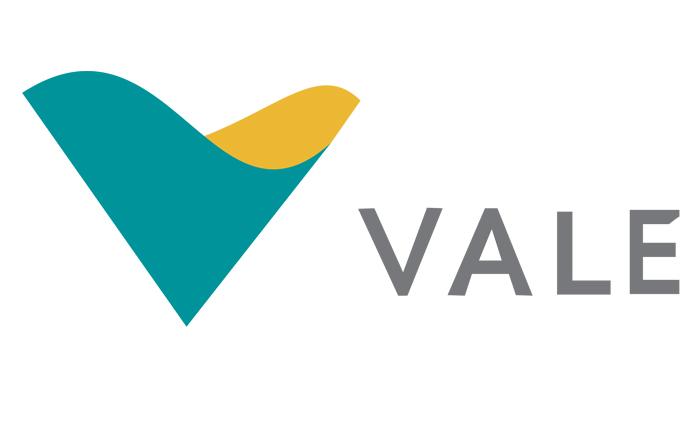Ações da VALE VALE3