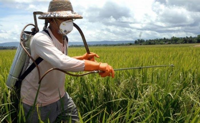 Crea-Minas fiscaliza empreendimentos do agronegócio em Araxá e região
