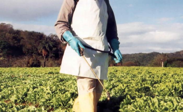 IMA abre consulta pública para atualizar normas sobre agrotóxicos