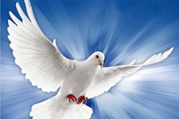 Programação Novena do Espírito Santo