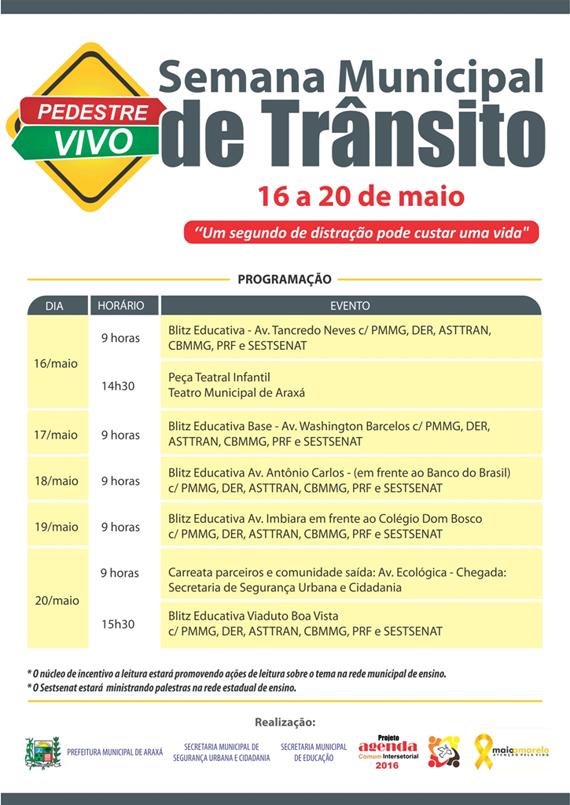 transito13516