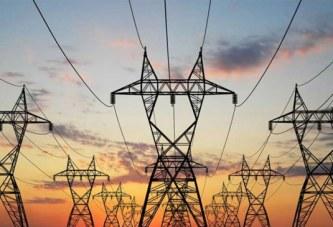Efficientia e Bem Brasil inauguram central de cogeração de energia