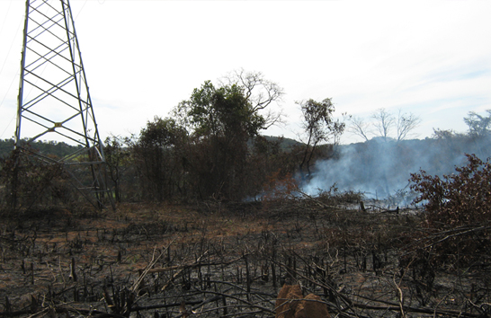 Cemig alerta sobre queimadas no período seco e o risco ao setor elétrico