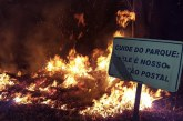 Incêndio consume cerca de 10 hectares do Parque do Cristo