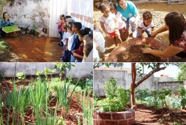 'Horta na Escola' comemora resultados alcançados em 2016