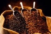 Safra mineira de café alcança volume recorde em 2016 com 30,7 milhões de sacas