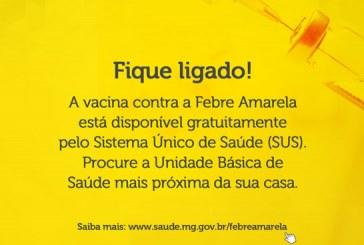 Secretaria de Saúde cria hotsite e esclarece dúvidas sobre a febre amarela e a vacinação