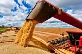 Minas mantém expectativa de safra recorde de grãos