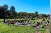 Circuito Respire invade Barreiro com aulas gratuitas de Yoga e Pilates
