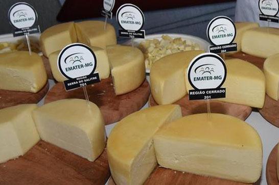 Concurso escolhe os melhores queijos Minas Artesanal do estado