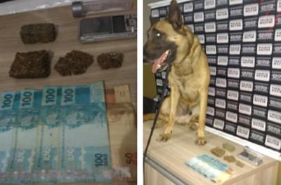 Casal é preso por trafico de drogas 3