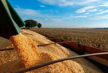 Agronegócio de Minas Gerais encerra o ano com recorde