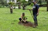 Mudas de espécies nativas são plantadas pela Codemig no Barreiro