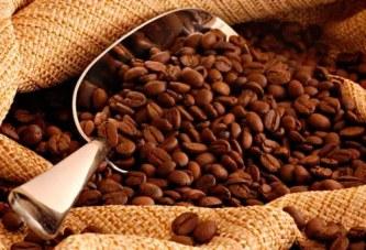 Araxá sedia Encontro de Integração de Cafeicultores