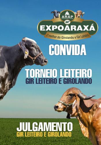 Torneio leiteiro da raça Gir Leiteiro e Girolando busca novo recorde na Expoaraxá