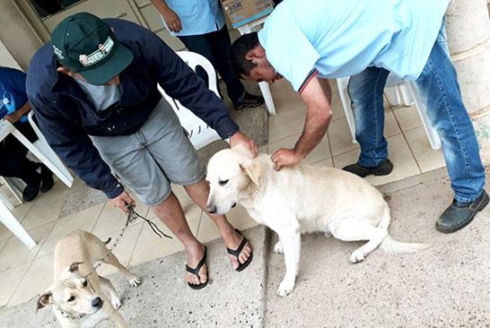 Mais de 15 mil animais são imunizados contra a raiva