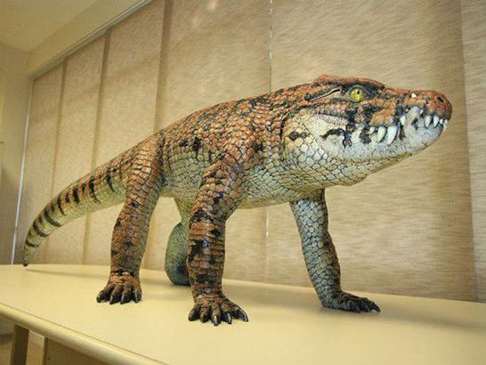 UFTM apresenta fóssil de crocodilo encontrado no Triângulo Mineiro