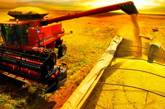 Contratação de crédito agrícola cresce 45% no primeiro bimestre