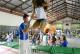 Sesc oferece diversão e brincadeiras em Araxá no próximo domingo