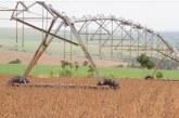 Safra de grãos pode chegar a 238,3 milhões de toneladas, diz Conab