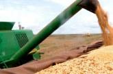 IBGE prevê safra de grãos 1,7% maior em 2019