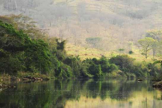 Triângulo Mineiro ganha novas trilhas no Parque Estadual do Pau Furado