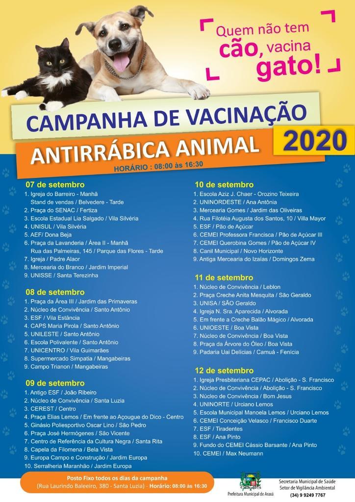 Vacinação de cães e gatos contra raiva começa no dia 7 de setembro 1